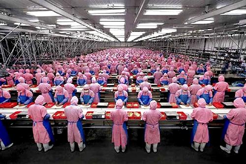 Chińska fabryka