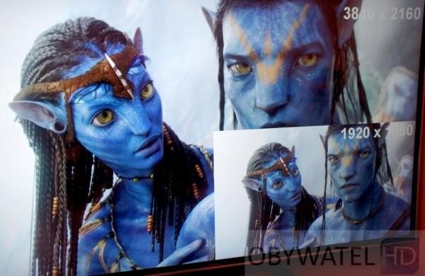 Avatar w 4K