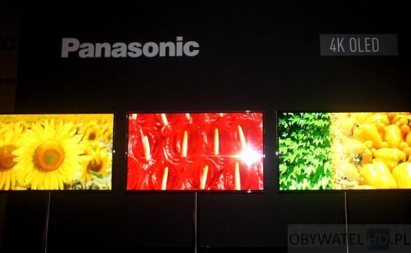 IFA 2013 Panasonic OLED 4K