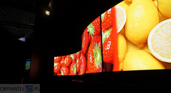 Panasonic Convention 2014 OLED