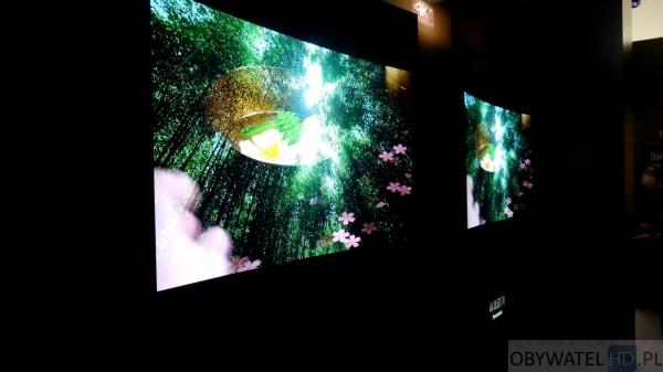 Panasonic Convention 2015 - OLED