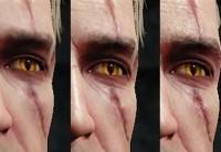 Wiedźmin 3 - Dziki Gon - porównanie grafiki wersji PC