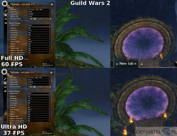 Guild Wars 2 FHD vs UHD
