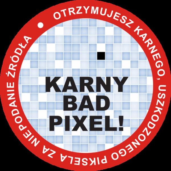 Karny Bad Pixel 2 - źródło