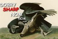 Chińskie Hisense przejmuje markę Sharp