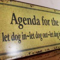 Majówka 2016 - agenda na dziś