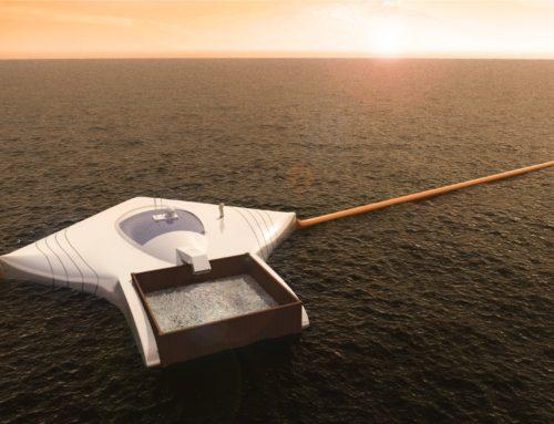 Dzień dobry! Czyste oceany i sekret długowieczności