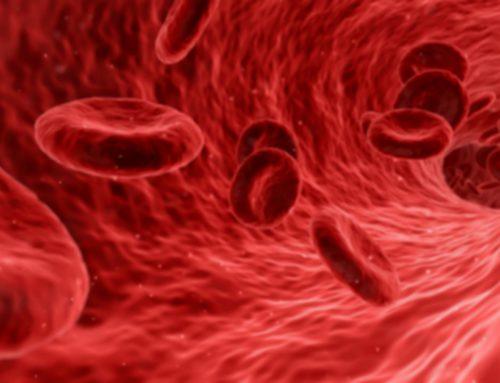 Krew to życie – dzielcie się nią! Jak działa centrum krwiodawstwa?